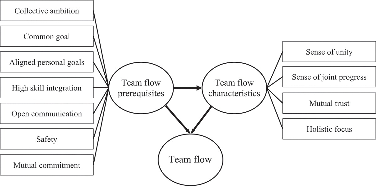 Testing the Team Flow Monitor